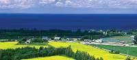 Canola farms around Lac St Jean, Quebec   Gilles Lapointe