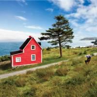 'The Cribbies' on Newfoundland's East Coast Trail | Barrett & MacKay Photo
