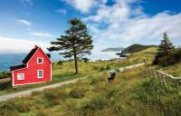 'The Cribbies' on Newfoundland's East Coast Trail |  <i>Barrett & MacKay Photo</i>