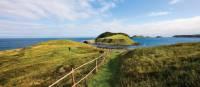 Island views from the East Coast Trail at Tors Cove | Barrett & MacKay Photo