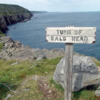 Signature East Coast Trail signage | Keri May