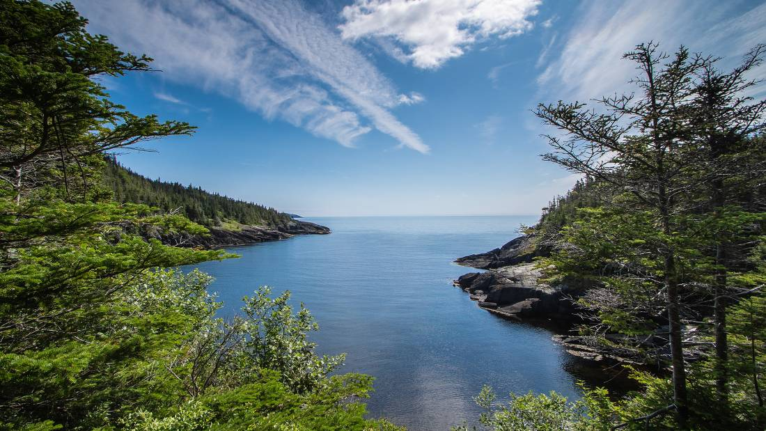 A wilderness path along Newfoundlan's Avalon Peninsula |  <i>Sherry Ott</i>