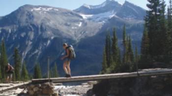 Iceline Trail, Yoho National Park, Canadian Rockies