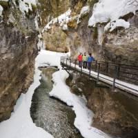 Ice Walk through Johnston Canyon | Banff Lake Louise Tourism