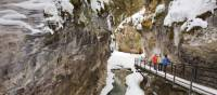 Ice Walk through Johnston Canyon   Banff Lake Louise Tourism