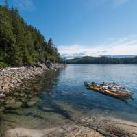 Parking lots look a lot different in the coastal rainforest | Jenn Dickie Photography