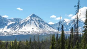 Kluane's dramatic Auriol Range can be seen as you enter the park