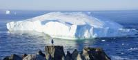 An icy giant moves along Newfoundland's coast