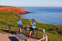 Scenic viewpoint in Prince Edward Island National Park |  <i>Tourism PEI/John Sylvester</i>