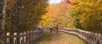 Confederation Trail on Prince Edward Island | Tourism PEI/Paul Baglole