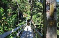 Bridge 27 of 147 over Tsocawis Creek, WCT |  <i>Nicole Moreau</i>