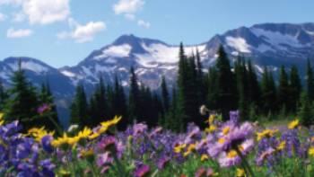 Outstanding alpine scenery of Wells Gray, BC