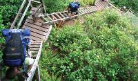 Climbing ladders on the West Coast Trail |  <i>The Great Canadian Bucket List</i>