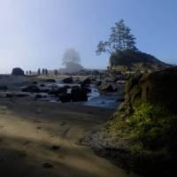 Dreamlike beach walk near Carmanah Point - No filter necessary | Keri May