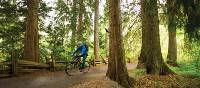 Cycling the Sea to Sky Trail in Whistler Valley | Tourism Whistler/Mike Crane