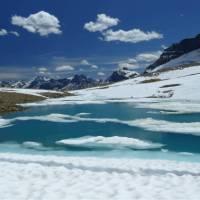 Iceline Trail near Takakkaw Falls, Yoho National Park, BC