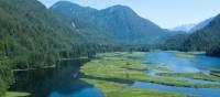 Great Bear Rainforest | Tom Rivest