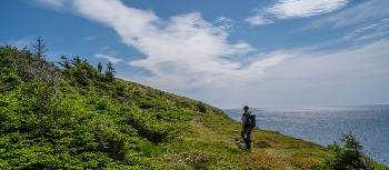 Hiking Newfoundland's Atlantic coast | Sherry Ott